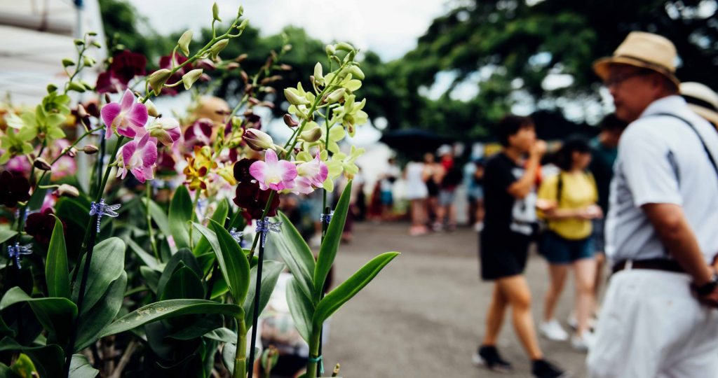 The Hawai'i Farm Bureau